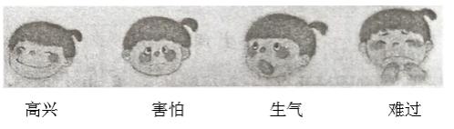 2019年贵州省小学一年级语文下册期末考试试卷及答案(黔东南州)
