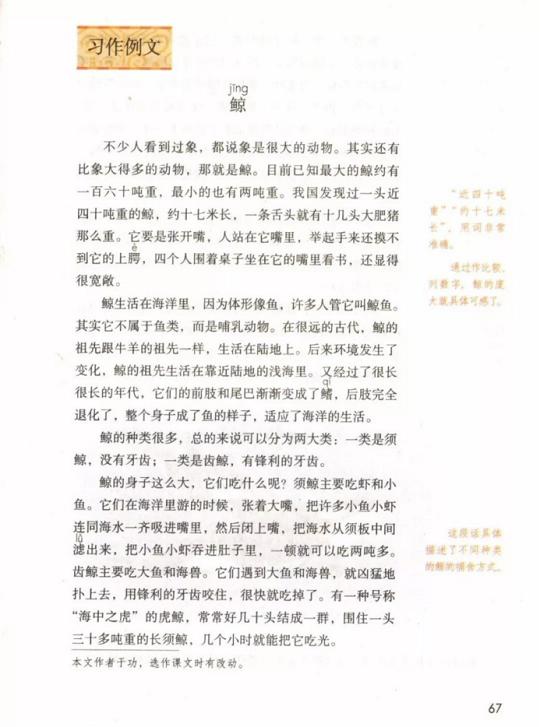 《习作·第五单元》人教版小学五年级语文上册2019年5月发版课本全册教材