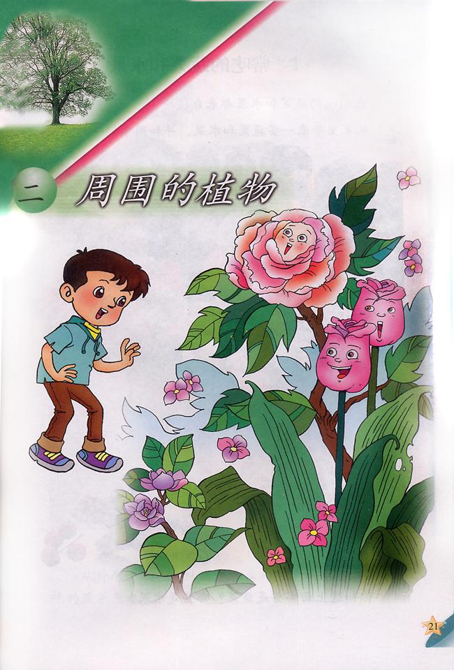 小学一年级科学下册二周围的植物